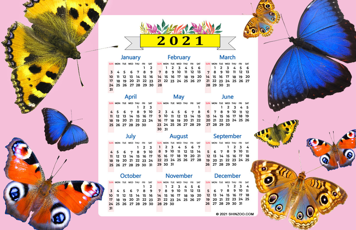 2021 Calendar 11X17 Printable Template: Life Is Like A Butterfly
