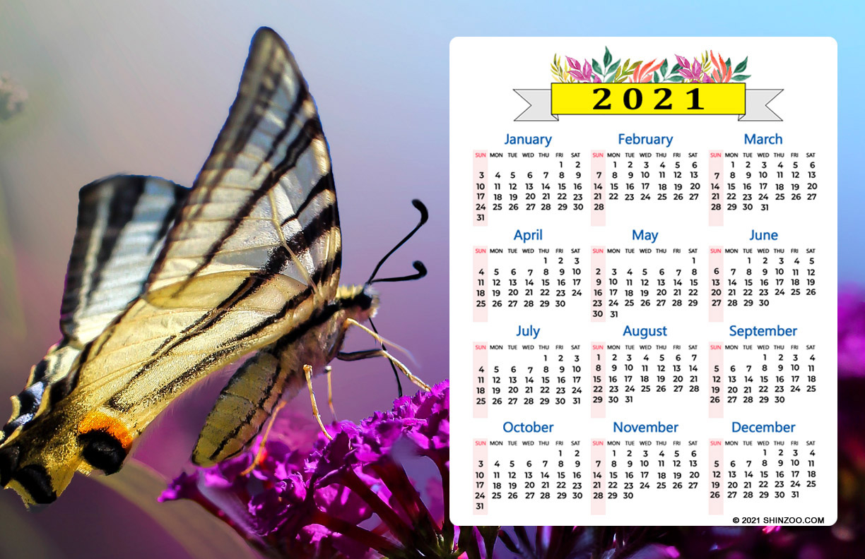 I Feel Like A Butterfly: 2021 Calendar 11X17 Printable Template