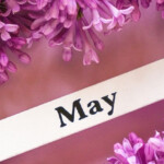 When Is May Ray Day? May Ray Day Countdown. Find Out How